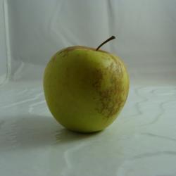 Pomme Golden x 500g