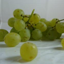 Raisin Blanc x 300g
