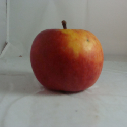 Pomme Pirouette x 500g