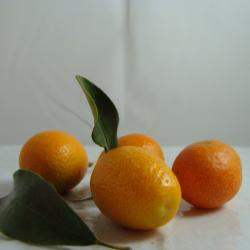 Kumquat x 200g