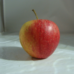 Pomme Pixie x 500g