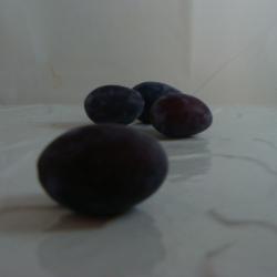 Prune Violette X 500g