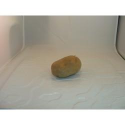 Pomme de terre Monalisa x 500g
