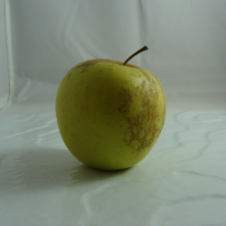 Pomme Goldrush x 1kg