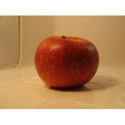 Pommes x 2 kg *Promo *