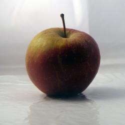 Pomme Ariane x 600g