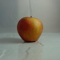 Pomme Dalinette x 500g