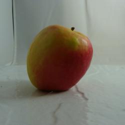 Pomme Crisp x 500g